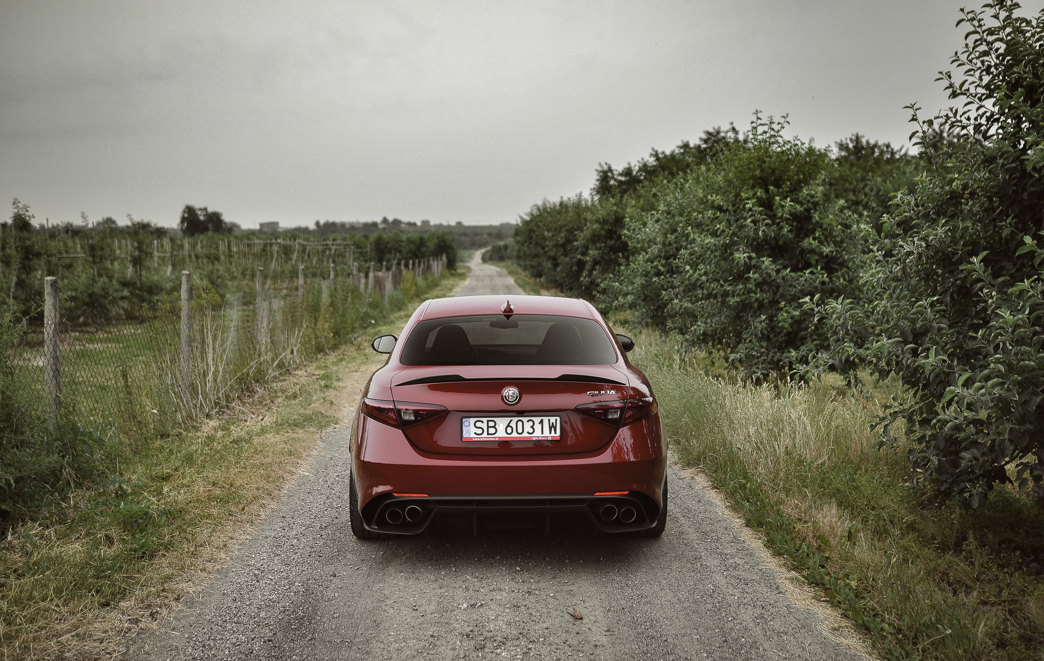 Alfa Romeo Giulia Q